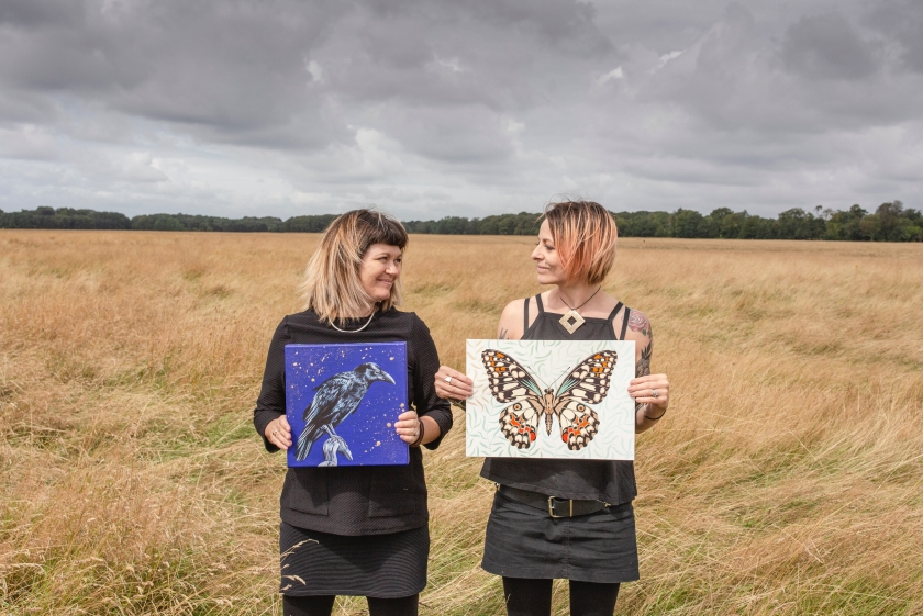 Wee Winged Wild Wonders exhibition by Orla Mellon and Ali-P